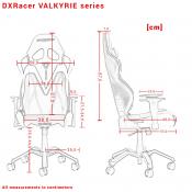 Valkyrie Series